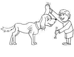 собака для ребенка - домашний питомец